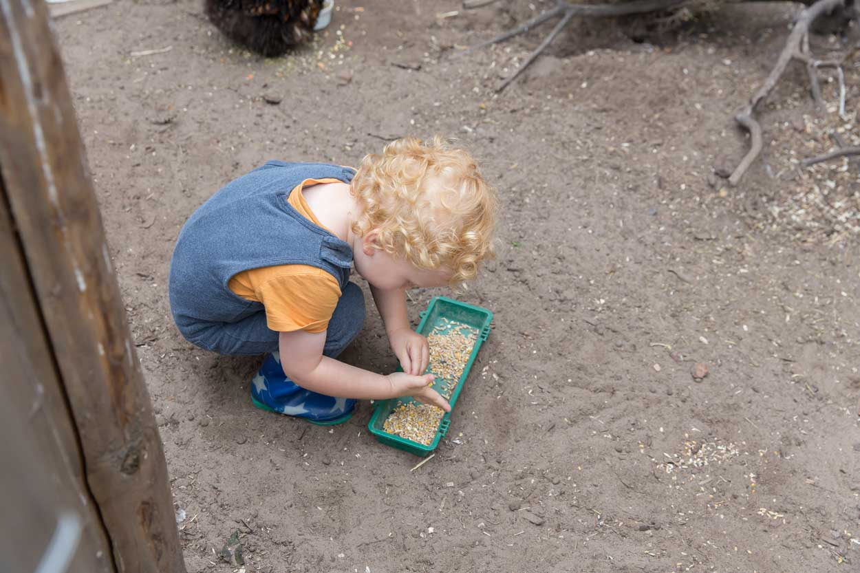 De-Vlinderboom-kinderopvang-Roosendaal-7